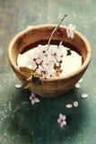 Λουλούδια άνοιξη στο ξύλινο κύπελλο Στοκ εικόνα με δικαίωμα ελεύθερης χρήσης