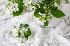 Λουλούδια άνοιξη του μήλου Κλάδος δέντρων της Apple σε ένα βάζο Στοκ Εικόνες