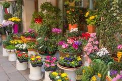 Λουλούδια έξω από το ανθοπωλείο Στοκ φωτογραφία με δικαίωμα ελεύθερης χρήσης