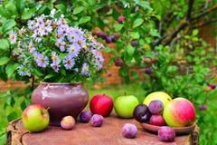 Λουλούδια από τον κήπο και τα φρούτα Στοκ Φωτογραφίες