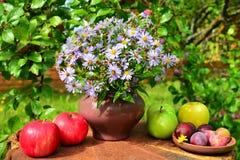 Λουλούδια από τον κήπο και τα φρούτα Στοκ Εικόνες