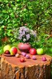 Λουλούδια από τον κήπο και τα φρούτα Στοκ φωτογραφία με δικαίωμα ελεύθερης χρήσης