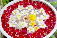 Λουλούδια για aromatherapy να επιπλεύσει σε ένα κύπελλο Στοκ φωτογραφίες με δικαίωμα ελεύθερης χρήσης