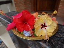 Λουλούδια για Pooja στοκ φωτογραφία με δικαίωμα ελεύθερης χρήσης