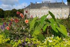 Λουλούδια ενάντια στο μουσείο Καλών Τεχνών του Λιμόζ Στοκ Εικόνες