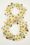 Λουλούδια ημέρας γυναικών Στοκ Εικόνες