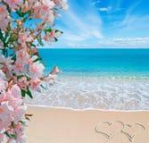 Λουλούδια, θάλασσα και καρδιές στοκ εικόνες