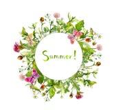 Λουλούδια λιβαδιών, θερινές πεταλούδες Κάρτα - πλαίσιο συνόρων στεφανιών watercolor Στοκ Φωτογραφίες