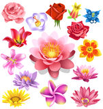 Λουλούδια καθορισμένα διανυσματική απεικόνιση