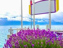 Λουλούδια και άσπρο κενό σημάδι με το πορφυρό πλαίσιο, υπόβαθρο με τη θολωμένη όμορφη λίμνη και υπόβαθρο νησιών Στοκ εικόνα με δικαίωμα ελεύθερης χρήσης