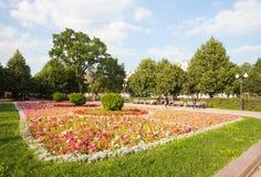 Λουλούδια και δέντρα στο πάρκο 12 λεωφόρων Tsvetnoy 08 2017 Στοκ Φωτογραφία