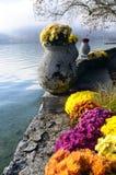 Λουλούδια και λίμνη του Annecy, στη Γαλλία Στοκ Φωτογραφίες