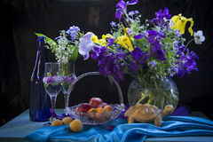 Λουλούδια και βερίκοκα άνοιξη Στοκ Εικόνα