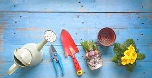 Λουλούδια και εργαλεία κηπουρικής, ελεύθερη SPA αντιγράφων Στοκ φωτογραφία με δικαίωμα ελεύθερης χρήσης