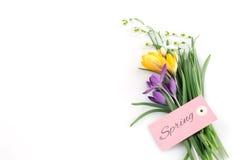 Λουλούδια και ευχετήρια κάρτα άνοιξη στοκ εικόνες