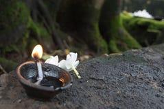 Λουλούδια και κάψιμο πετρελαίου Στοκ Εικόνες