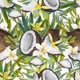 Λουλούδια και καρύδα βανίλιας Watercolor απεικόνιση αποθεμάτων