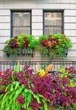 Λουλούδια και μπαλκόνια στην πόλη της Νέας Υόρκης Στοκ Εικόνες