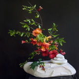 Λουλούδια και πέτρες Στοκ φωτογραφίες με δικαίωμα ελεύθερης χρήσης