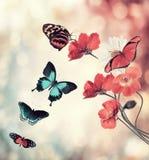 Λουλούδια και πεταλούδες Στοκ φωτογραφία με δικαίωμα ελεύθερης χρήσης