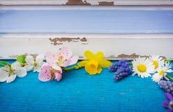 Λουλούδια και πρόωρα bloomers στο ξύλο Στοκ εικόνες με δικαίωμα ελεύθερης χρήσης