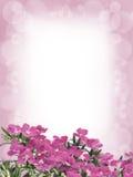 Λουλούδια και υπόβαθρο θαμπάδων Στοκ φωτογραφία με δικαίωμα ελεύθερης χρήσης