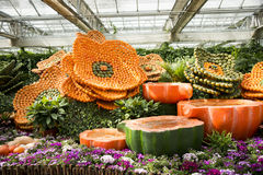 Λουλούδια και φρούτα Στοκ Εικόνα