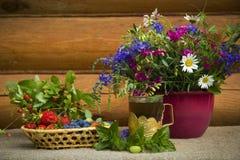 Λουλούδια και ώριμα μούρα Στοκ Εικόνες