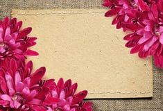 Λουλούδια καρτών και αστέρων εγγράφου στον καμβά Στοκ εικόνες με δικαίωμα ελεύθερης χρήσης