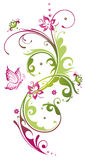 Λουλούδια, καλοκαίρι, ροζ, πράσινο Στοκ εικόνα με δικαίωμα ελεύθερης χρήσης