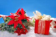 Λουλούδια κιβωτίων και poinsettia δώρων Χριστουγέννων στο χιόνι Στοκ Φωτογραφία