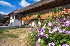 Λουλούδια μέσα στο παλαιό ορθόδοξο προαύλιο μοναστηριών Polovragi Στοκ Φωτογραφίες