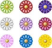 Λουλούδια με τα πέταλα μεταξιού απεικόνιση αποθεμάτων
