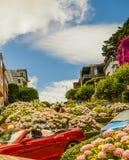 Λουλούδια οδών Lombard Στοκ φωτογραφίες με δικαίωμα ελεύθερης χρήσης
