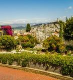 Λουλούδια οδών Lombard στοκ εικόνες με δικαίωμα ελεύθερης χρήσης