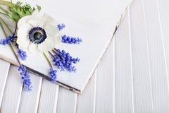 Λουλούδια Πάσχας στο άσπρο ξύλο Στοκ εικόνα με δικαίωμα ελεύθερης χρήσης