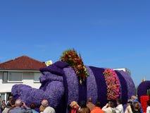 Λουλούδια παρελάσεων Στοκ Εικόνες