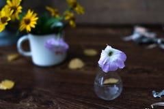 Λουλούδια πετουνιών σε έναν βολβό γυαλιού σε ένα ξύλινο υπόβαθρο Στοκ εικόνες με δικαίωμα ελεύθερης χρήσης