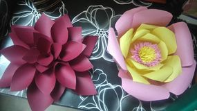 Λουλούδια πιπεριών Στοκ Εικόνες