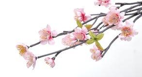 Λουλούδια που γίνονται από το ύφασμα Στοκ Φωτογραφίες