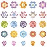 Λουλούδια που τίθενται Στοκ Εικόνα