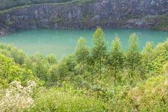 Λουλούδια, πράσινα δέντρα, λίμνη και απότομος βράχος Στοκ εικόνα με δικαίωμα ελεύθερης χρήσης