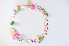 Λουλούδια πλαισίων κύκλων Στοκ Φωτογραφία