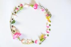 Λουλούδια πλαισίων κύκλων Στοκ φωτογραφία με δικαίωμα ελεύθερης χρήσης