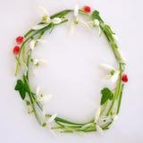 Λουλούδια πλαισίων κύκλων Στοκ φωτογραφίες με δικαίωμα ελεύθερης χρήσης