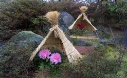Λουλούδια σε έναν παραδοσιακό ιαπωνικό κήπο στοκ εικόνα