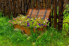 Λουλούδια σε ένα αρχικό κρεβάτι Στοκ εικόνες με δικαίωμα ελεύθερης χρήσης