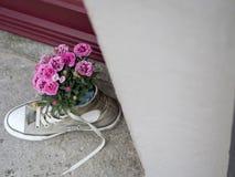 Λουλούδια σε ένα παπούτσι Στοκ Φωτογραφίες