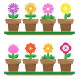 Λουλούδια στα δοχεία Στοκ εικόνα με δικαίωμα ελεύθερης χρήσης