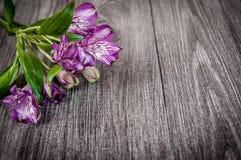 Λουλούδια στην ξύλινη ανασκόπηση Ελεύθερου χώρου για το κείμενο, κινηματογράφηση σε πρώτο πλάνο Στοκ Φωτογραφίες